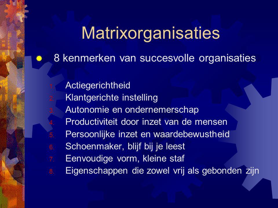 Matrixorganisaties 8 kenmerken van succesvolle organisaties