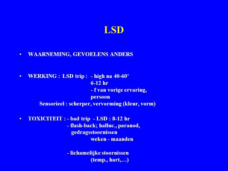 LSD WAARNEMING, GEVOELENS ANDERS