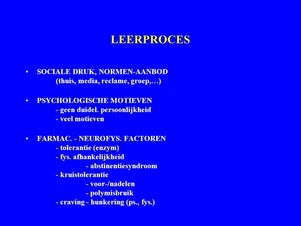 LEERPROCES SOCIALE DRUK, NORMEN-AANBOD (thuis, media, reclame, groep,…) PSYCHOLOGISCHE MOTIEVEN - geen duidel. persoonlijkheid - veel motieven.