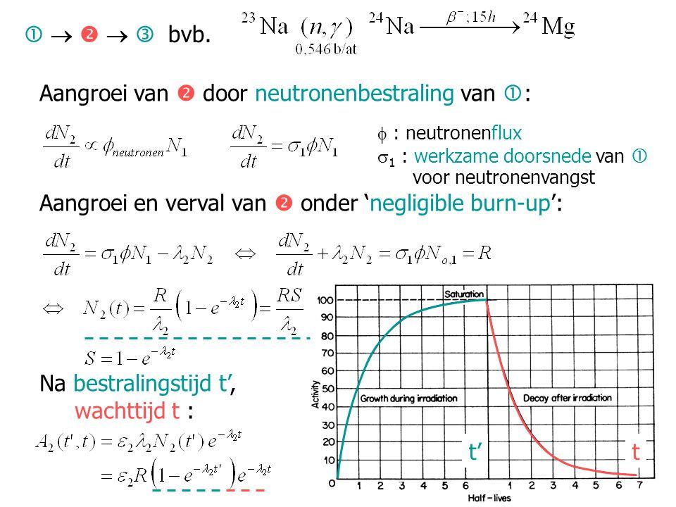 Aangroei van  door neutronenbestraling van :  : neutronenflux