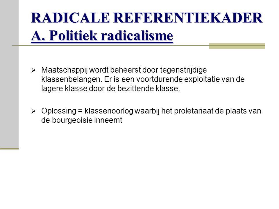 RADICALE REFERENTIEKADER A. Politiek radicalisme