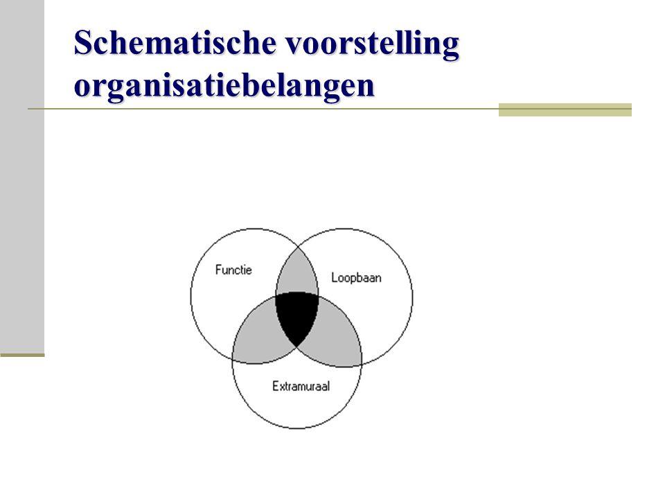 Schematische voorstelling organisatiebelangen