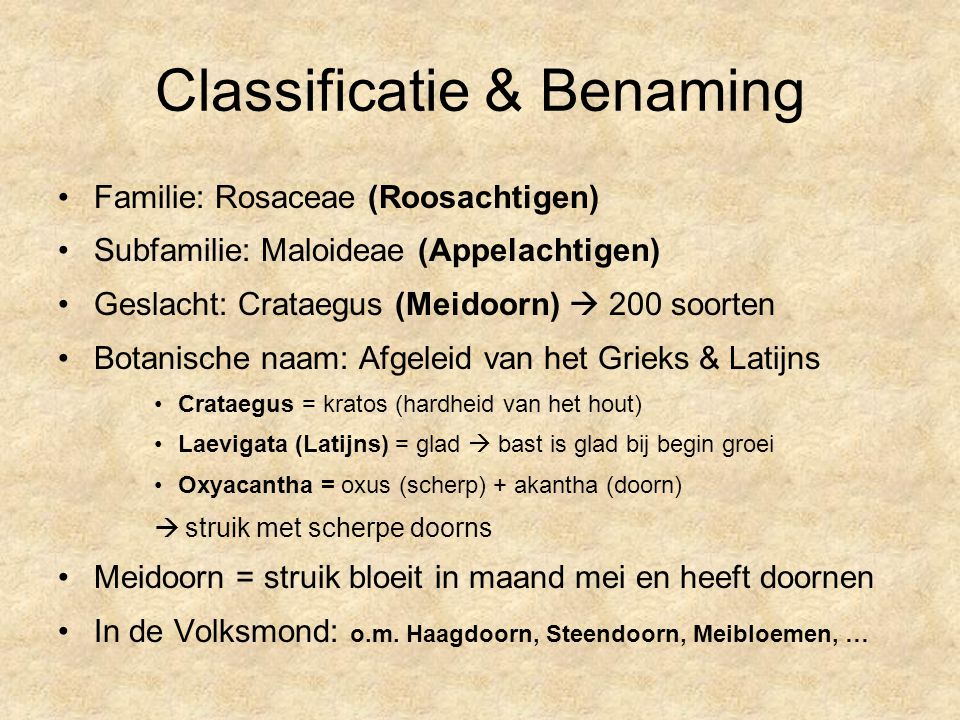 Classificatie & Benaming