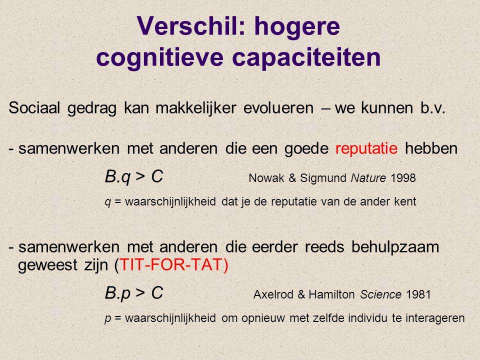 Verschil: hogere cognitieve capaciteiten