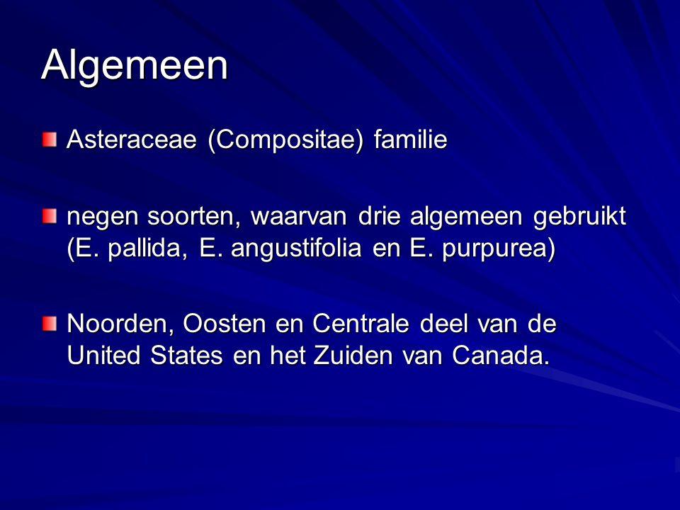 Algemeen Asteraceae (Compositae) familie