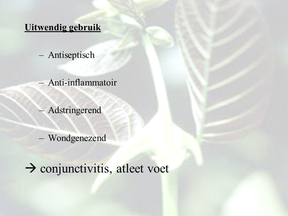  conjunctivitis, atleet voet