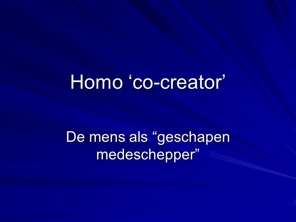 De mens als geschapen medeschepper