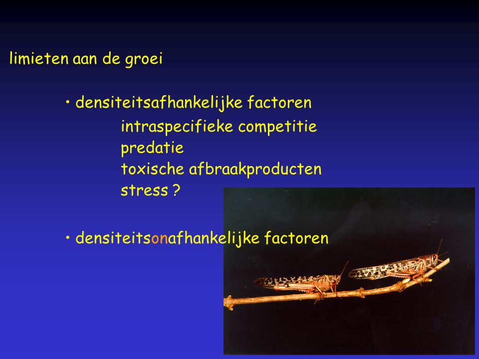 limieten aan de groei densiteitsafhankelijke factoren. intraspecifieke competitie. predatie. toxische afbraakproducten.