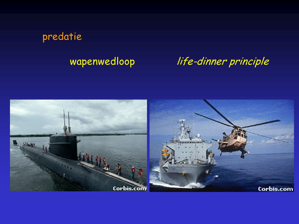 predatie wapenwedloop life-dinner principle