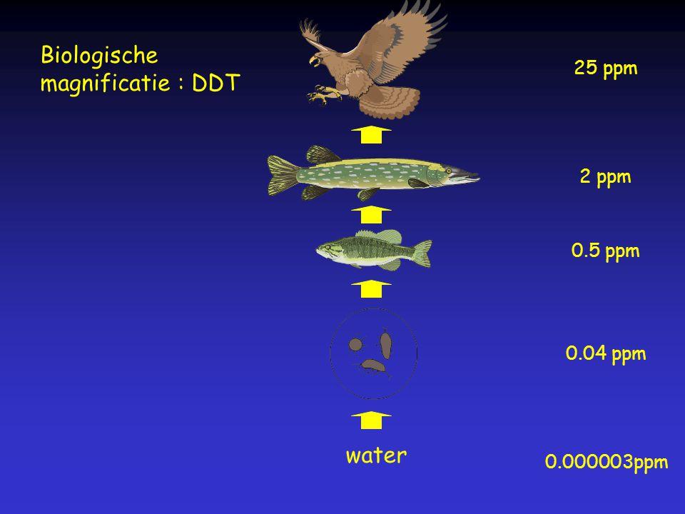 Biologische magnificatie : DDT water 25 ppm 2 ppm 0.5 ppm 0.04 ppm