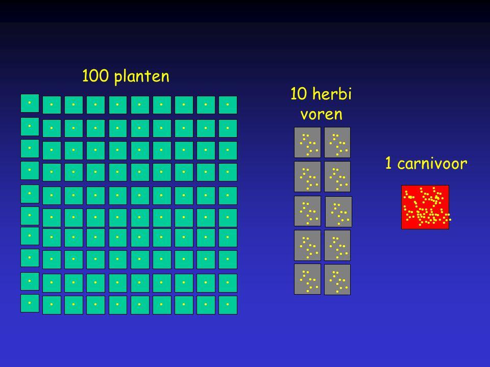 • 100 planten • 10 herbi voren • 1 carnivoor
