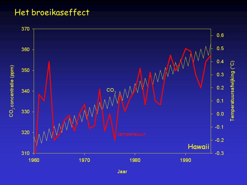Het broeikaseffect Hawaii