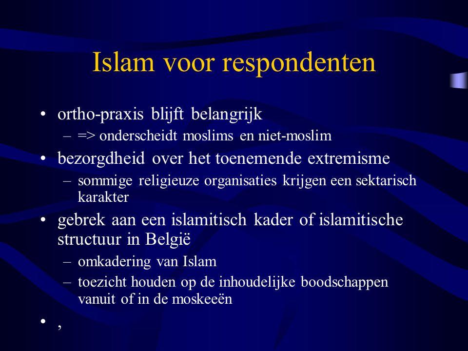 Islam voor respondenten