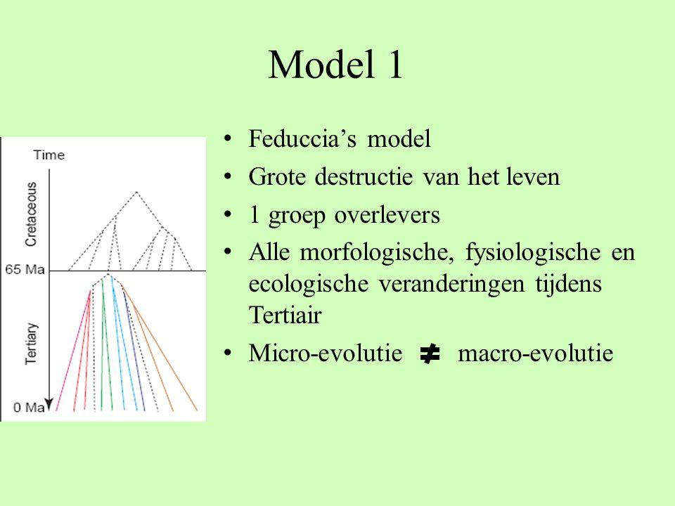 Model 1 Feduccia's model Grote destructie van het leven