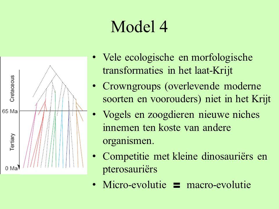 Model 4 Vele ecologische en morfologische transformaties in het laat-Krijt.