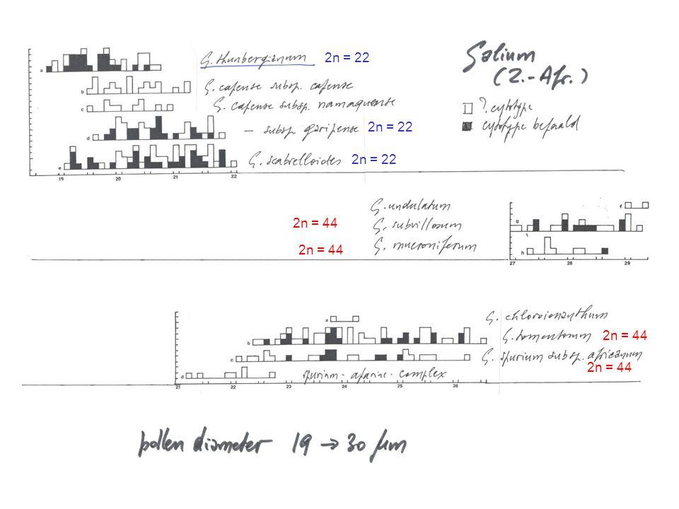 2n = 22 2n = 22. 2n = 22. 2n = 44. 2n = 44. Conclusies uit de pollenmetingen: Andere variëteiten van G. capense allicht diploïd.