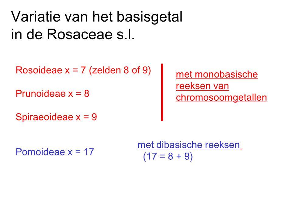 Variatie van het basisgetal in de Rosaceae s.l.