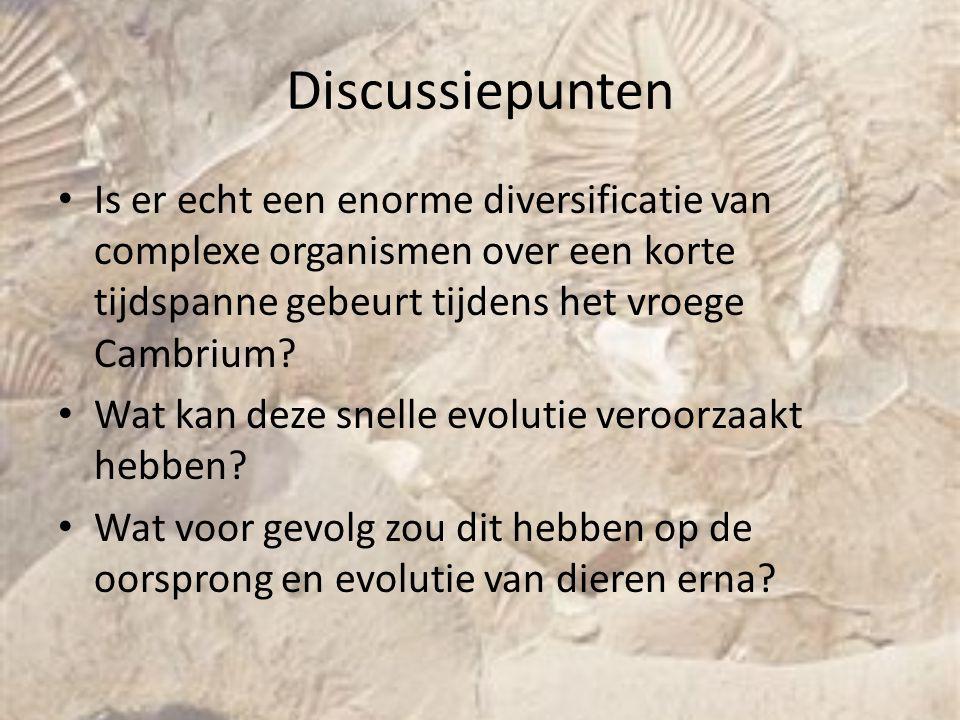 Discussiepunten Is er echt een enorme diversificatie van complexe organismen over een korte tijdspanne gebeurt tijdens het vroege Cambrium