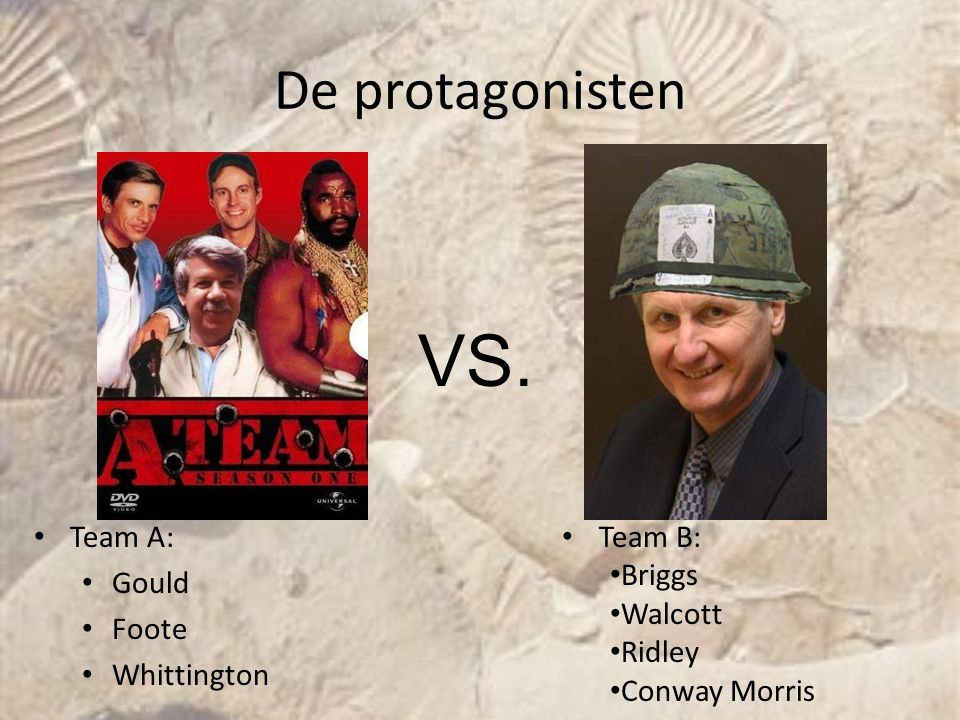 VS. De protagonisten Team A: Gould Foote Whittington Team B: Briggs