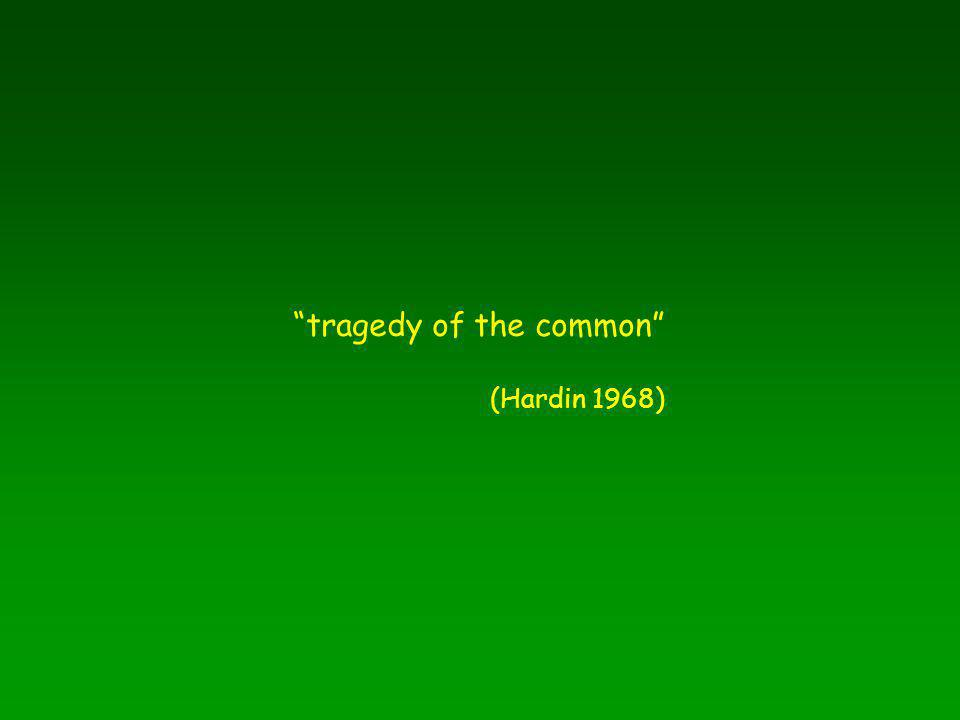 tragedy of the common