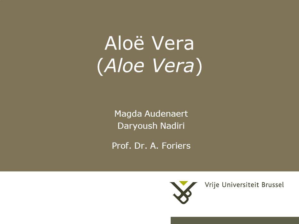 Magda Audenaert Daryoush Nadiri Prof. Dr. A. Foriers