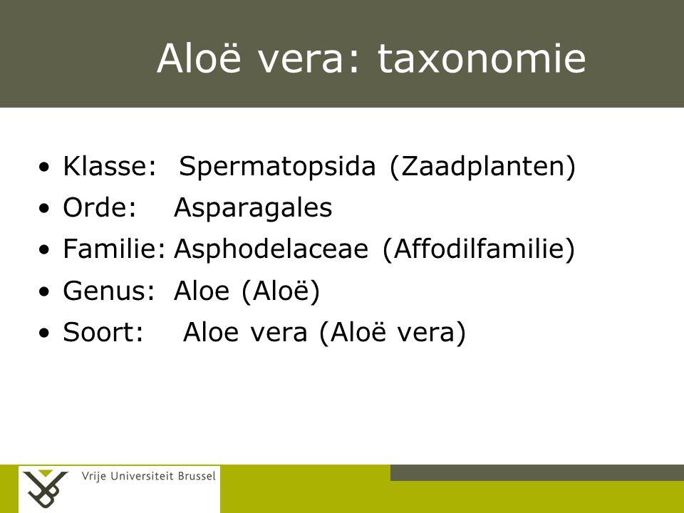 Aloë vera: taxonomie Klasse: Spermatopsida (Zaadplanten)
