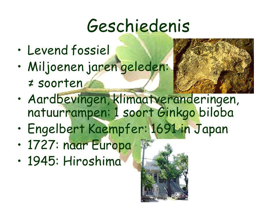 Geschiedenis Levend fossiel Miljoenen jaren geleden: ≠ soorten