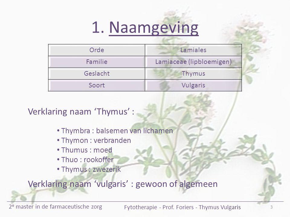 1. Naamgeving Verklaring naam 'Thymus' :