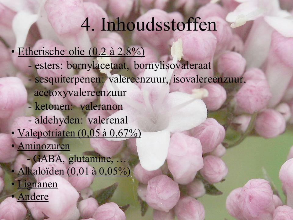 4. Inhoudsstoffen Etherische olie (0,2 à 2,8%)