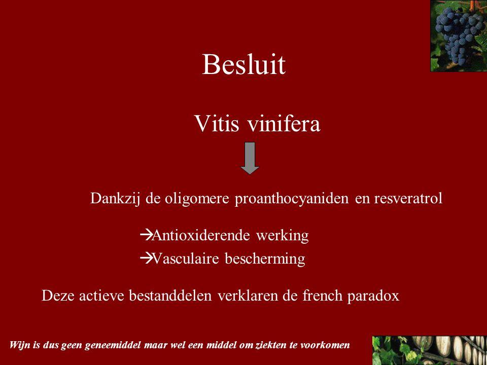 Besluit Vitis vinifera