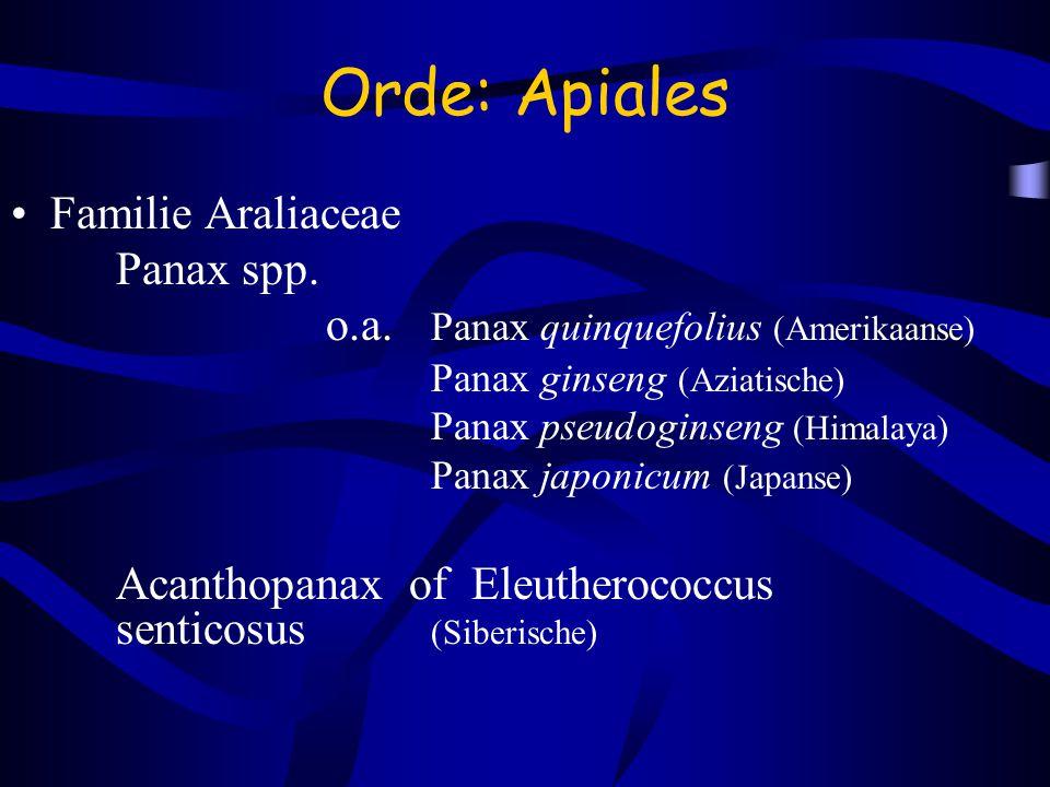 Orde: Apiales Familie Araliaceae Panax spp.
