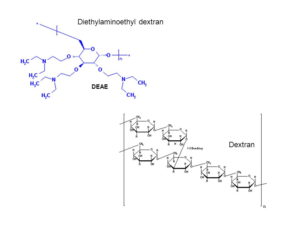 Diethylaminoethyl dextran