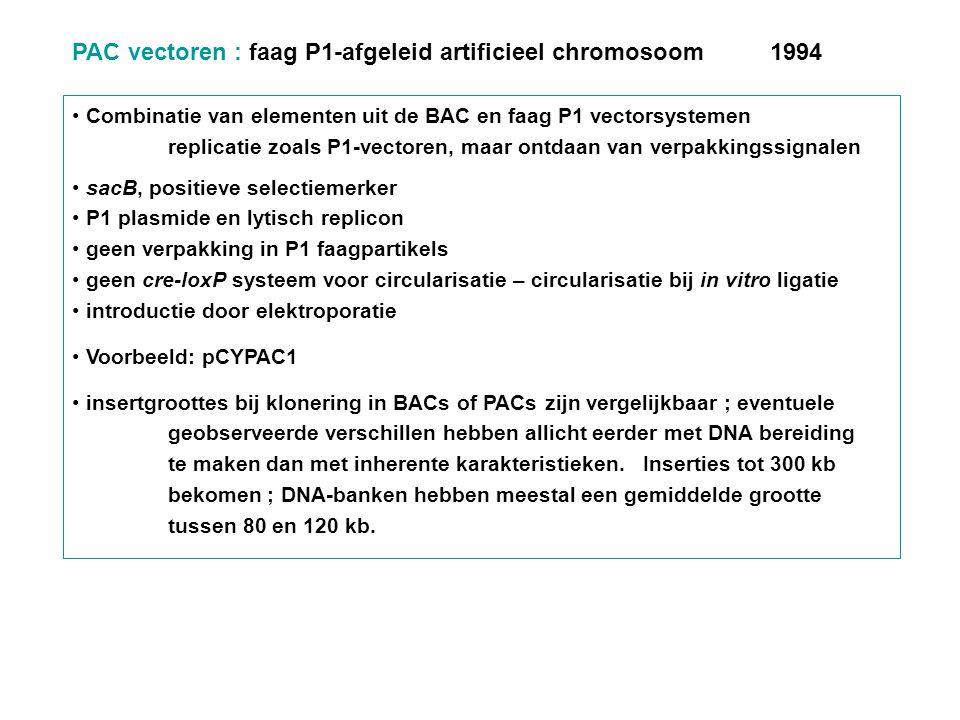PAC vectoren : faag P1-afgeleid artificieel chromosoom 1994