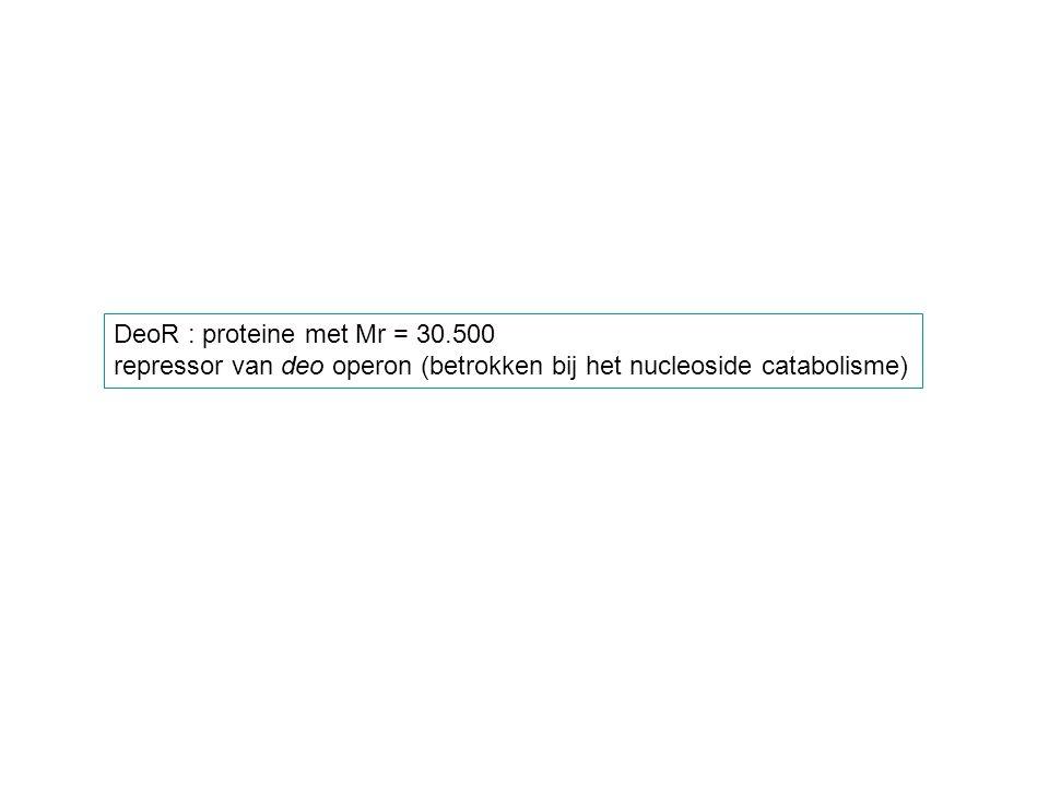 DeoR : proteine met Mr = 30.500 repressor van deo operon (betrokken bij het nucleoside catabolisme)