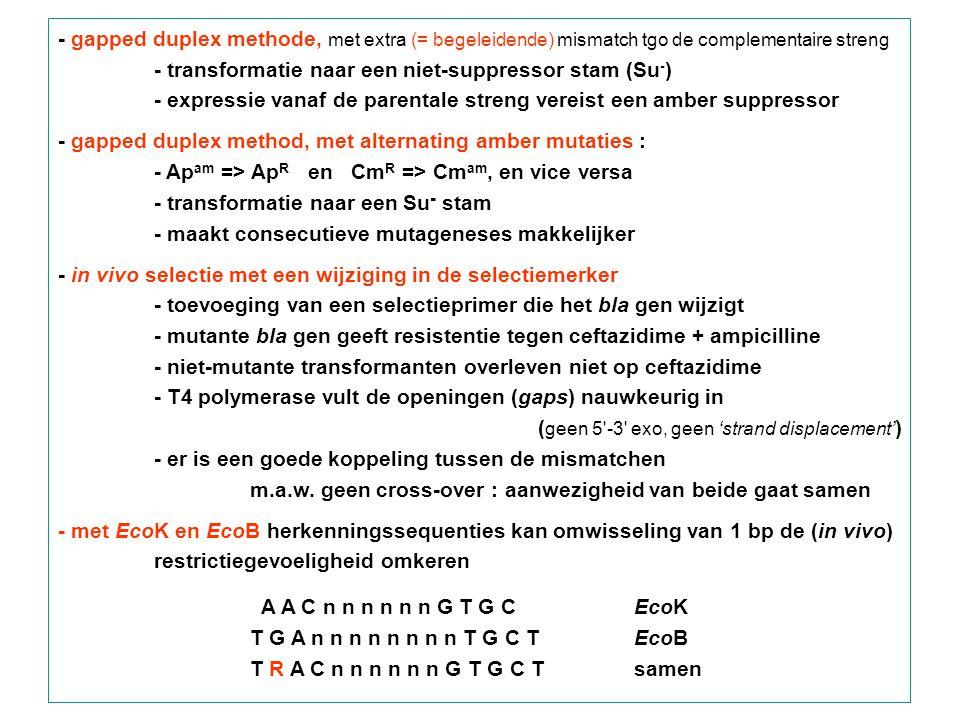 - gapped duplex methode, met extra (= begeleidende) mismatch tgo de complementaire streng