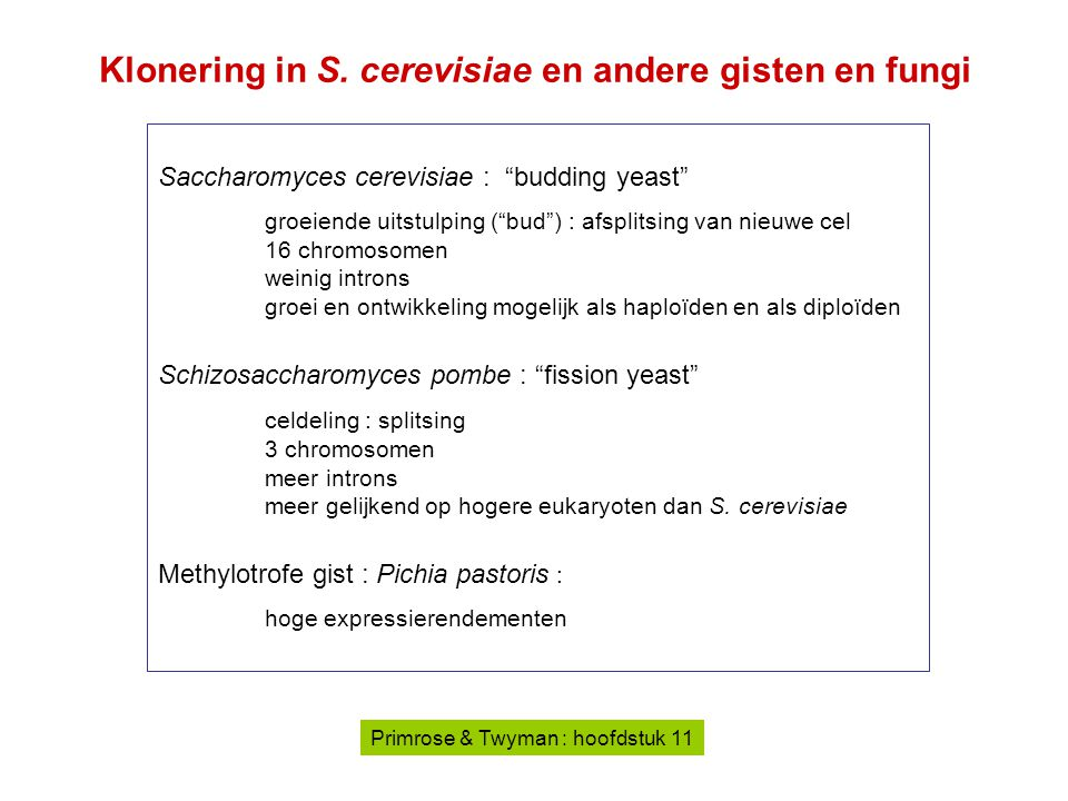 Klonering in S. cerevisiae en andere gisten en fungi