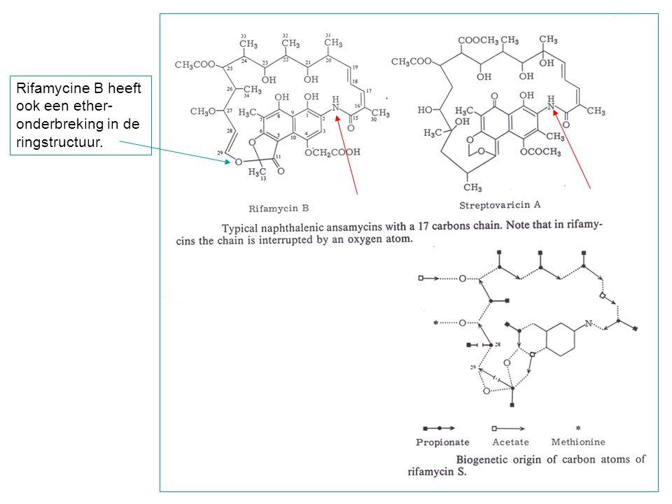 Rifamycine B heeft ook een ether- onderbreking in de ringstructuur.