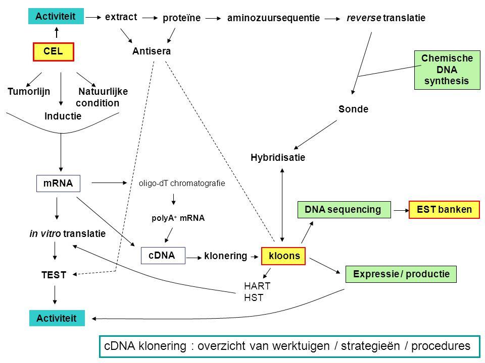 cDNA klonering : overzicht van werktuigen / strategieën / procedures