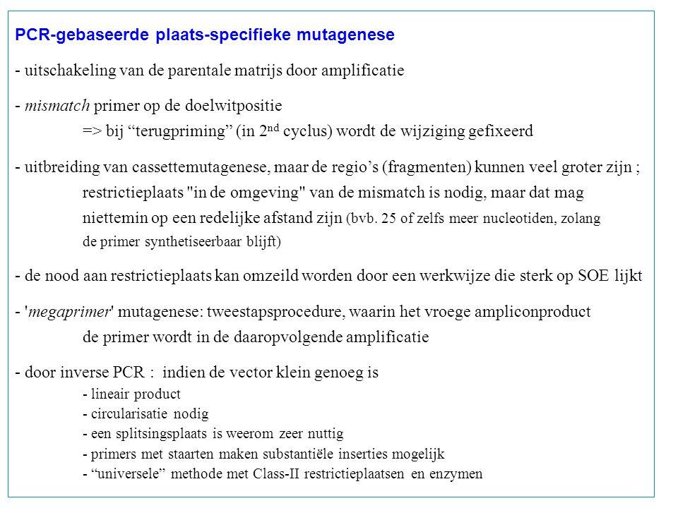 PCR-gebaseerde plaats-specifieke mutagenese
