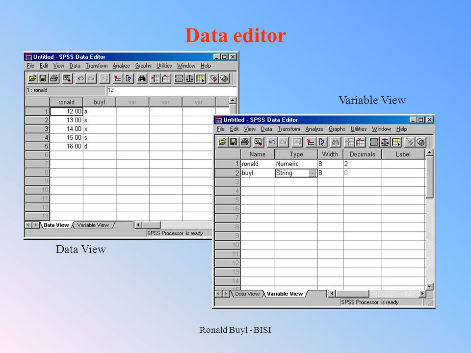 Data editor Variable View Data View Ronald Buyl - BISI