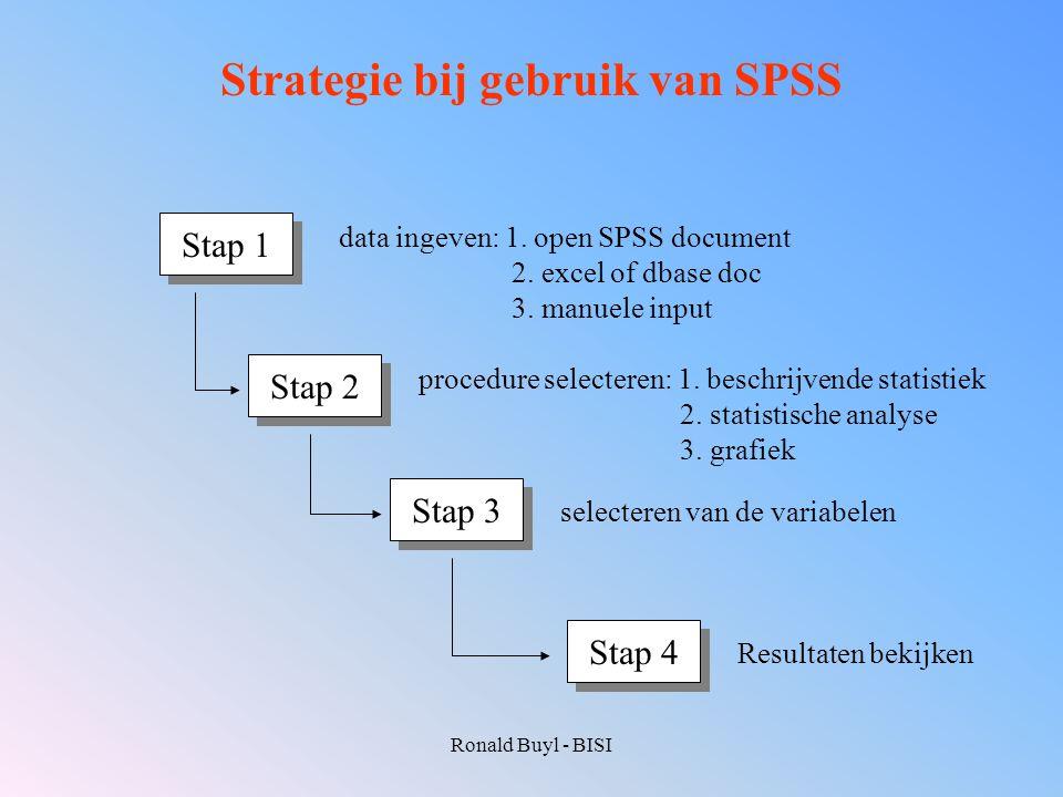 Strategie bij gebruik van SPSS