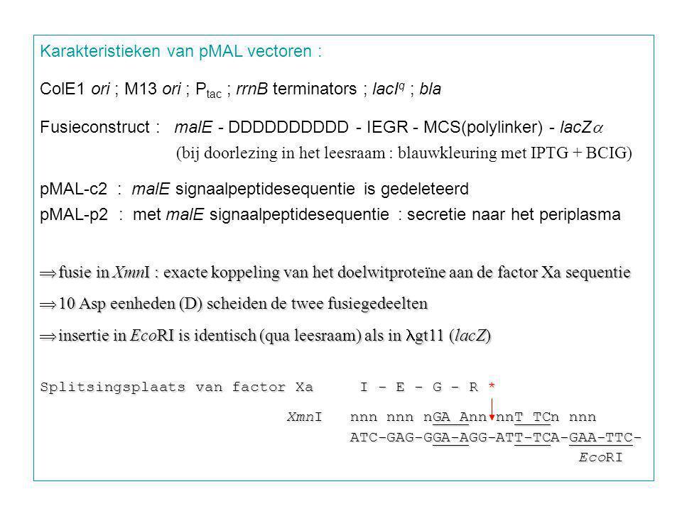 Karakteristieken van pMAL vectoren :