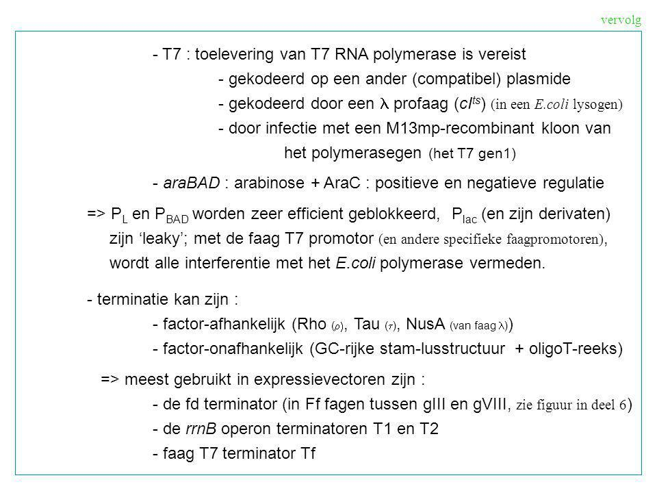 - T7 : toelevering van T7 RNA polymerase is vereist