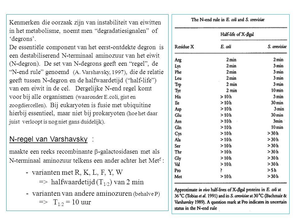 N-regel van Varshavsky :