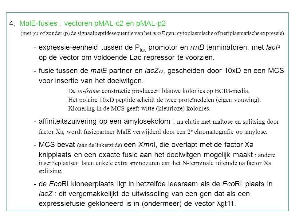4. MalE-fusies : vectoren pMAL-c2 en pMAL-p2