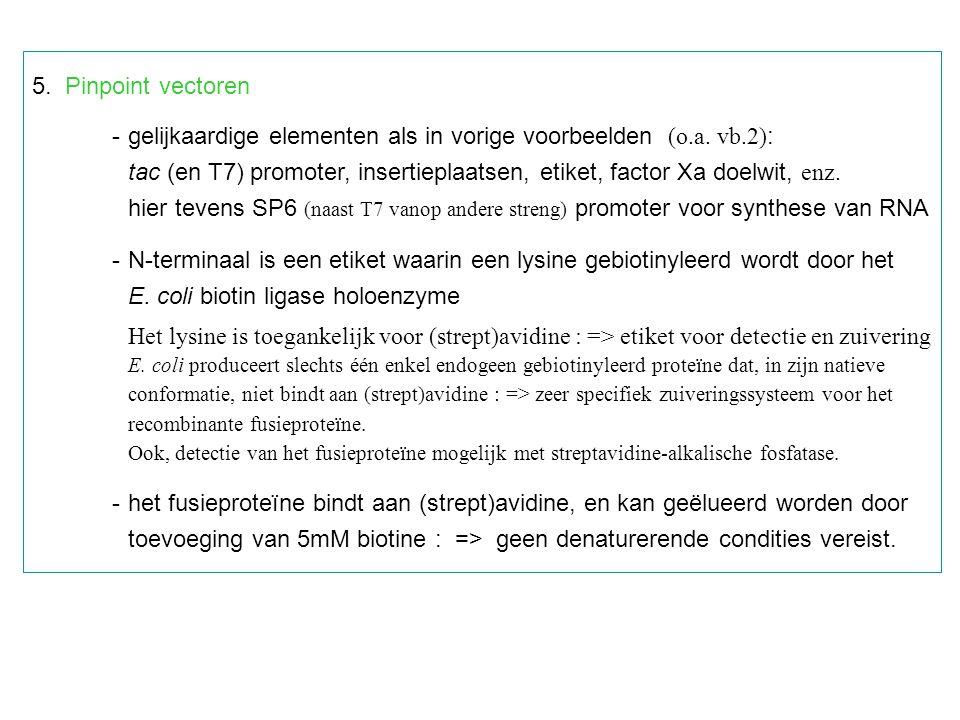 - gelijkaardige elementen als in vorige voorbeelden (o.a. vb.2):