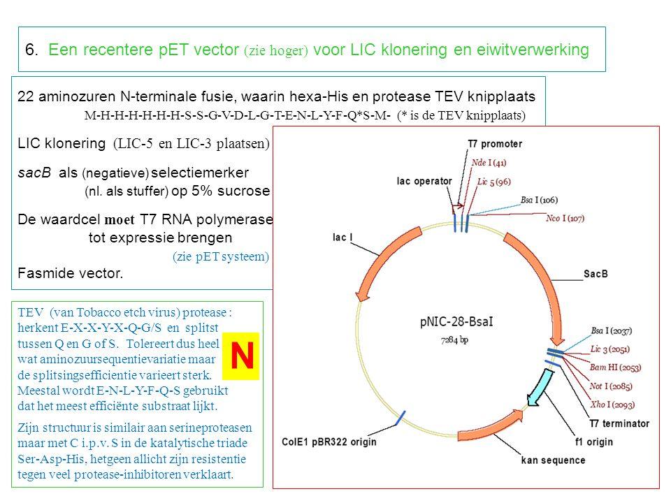 6. Een recentere pET vector (zie hoger) voor LIC klonering en eiwitverwerking