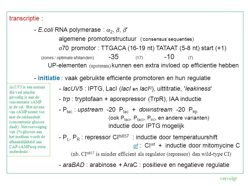 - E.coli RNA polymerase : a2, b, b