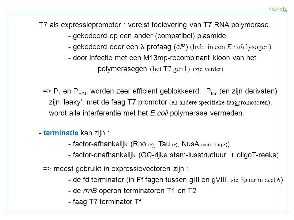 T7 als expressiepromoter : vereist toelevering van T7 RNA polymerase