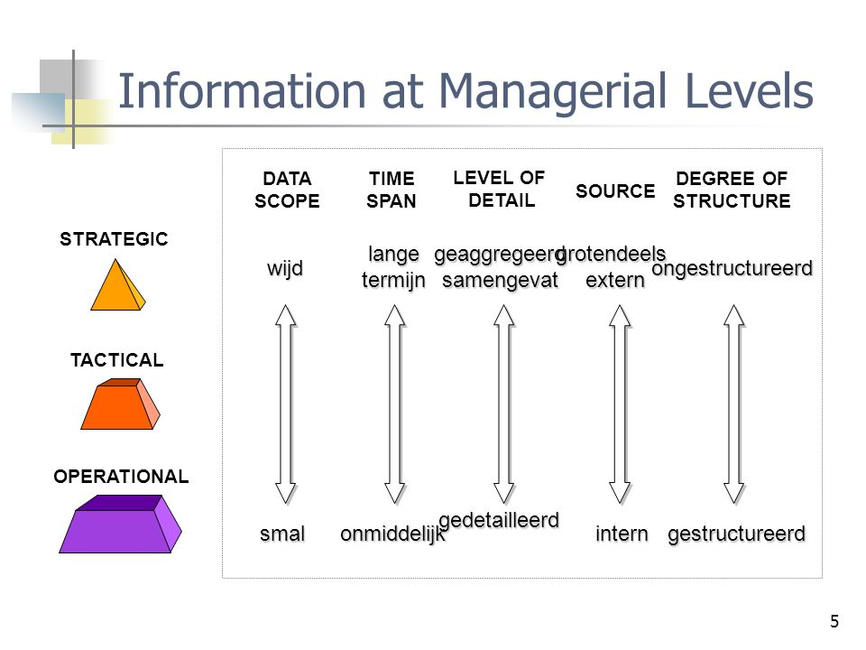 Information at Managerial Levels